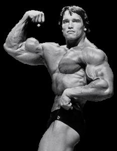 info om briketter og protein
